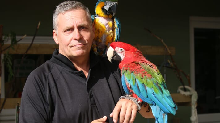 A new direction for parrot conservation thumbnail image