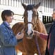 A look inside Sussex Equine Hospital thumbnail image