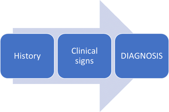 FIGURE (1) The diagnostic process involves taking a history, clinical and dermatological examination and basic screening tests. Careful rule-outs include parasites (especially fleas and mites), infection and food allergy