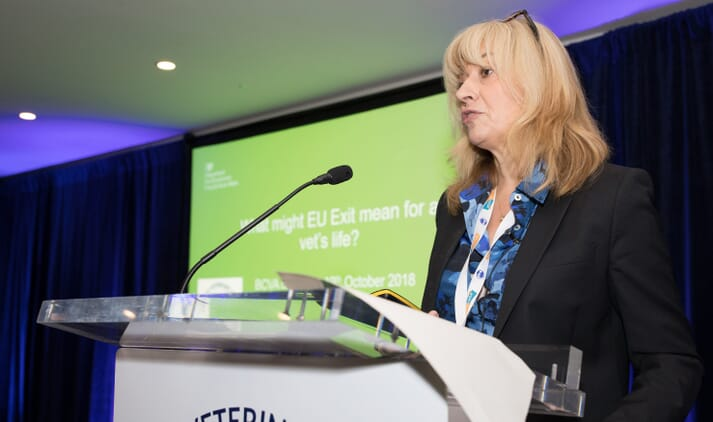 The UK's Chief Veterinary Officer, Christine Middlemiss, advocated a move towards a vet-led team approach to practice post-Brexit
