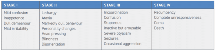 TABLE 2 Stages of hepatic encephalopathy